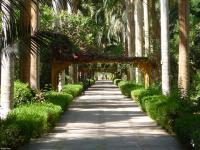 Jardin botanique Assouan.jpeg